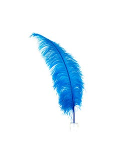 Ostrich Feathers-Spads Selected - Dark Turquoise