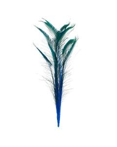 Peacock Swords Stem Dyed - Dark Turquoise