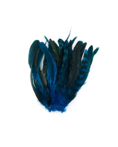 Rooster Coque Tails-Chinchilla Dk Turquoise