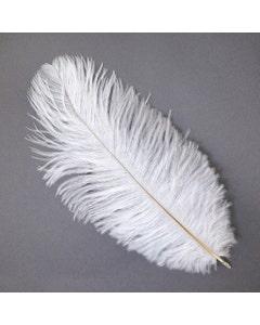 "Ostrich Feathers-Drabs - 9-12"" - 12 pcs [Premium Top Quality]  White"