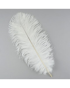Ostrich Feather Drabs - 12 Pieces per package 13 -16 inch - White