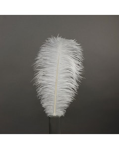 Ostrich Drabs Dyed - White