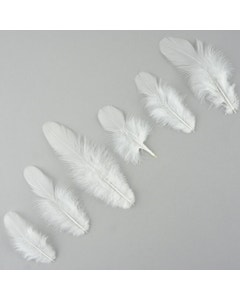 Loose Rooster Plumage Dyed - White