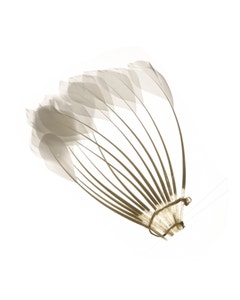 Duck Stripped Center Fan Trim - White