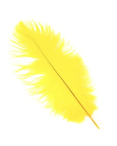 Ostrich Feather Drabs - 12 Pieces per package 13 -16 inch - Yellow