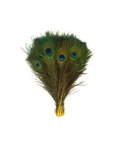 "Bulk Peacock Eye Feathers (Full Eye) Stem Dyed  100 PC  8-15""  - Yellow"