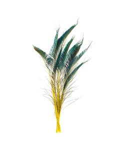 Peacock Swords Stem Dyed - Yellow